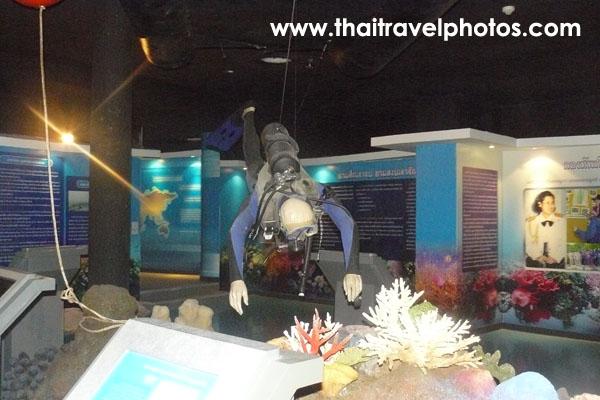 พิพิธภัณฑ์ธรรมชาติหมู่เกาะทะเลไทย